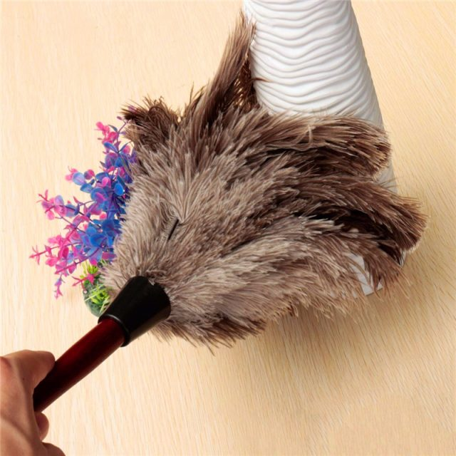 Anti-Static Natural Ostrich Feather Duster for Cleaning